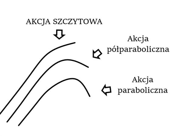 Wizualizacja jak się różnią poszczególne akcje wędek - szczytowa, półparaboliczna, paraboliczna